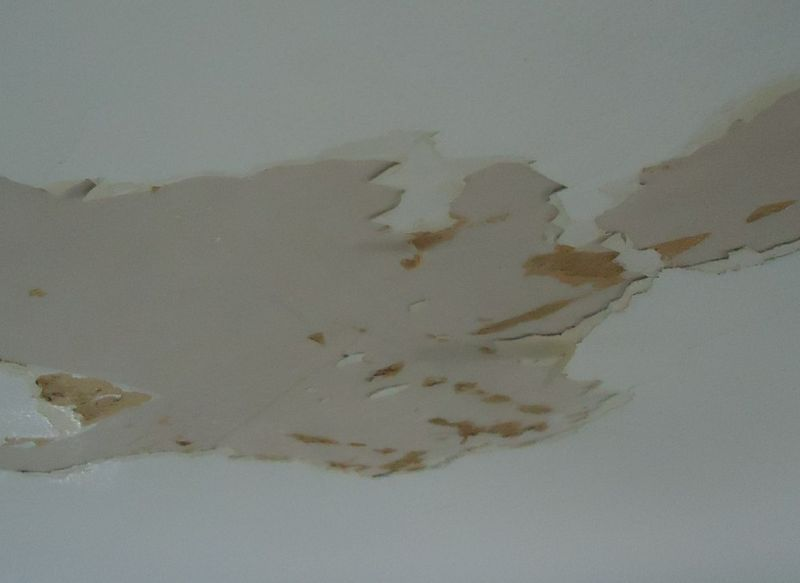 How to Repair Water Damaged Ceiling Paint
